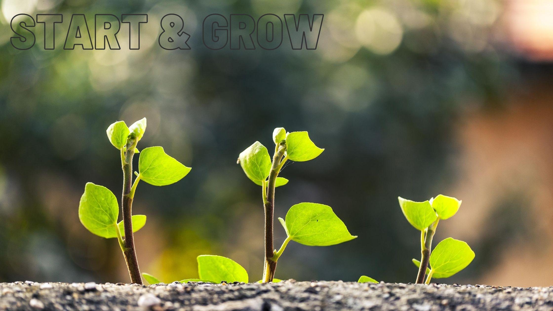 Start your online journey - We help online business start and grow